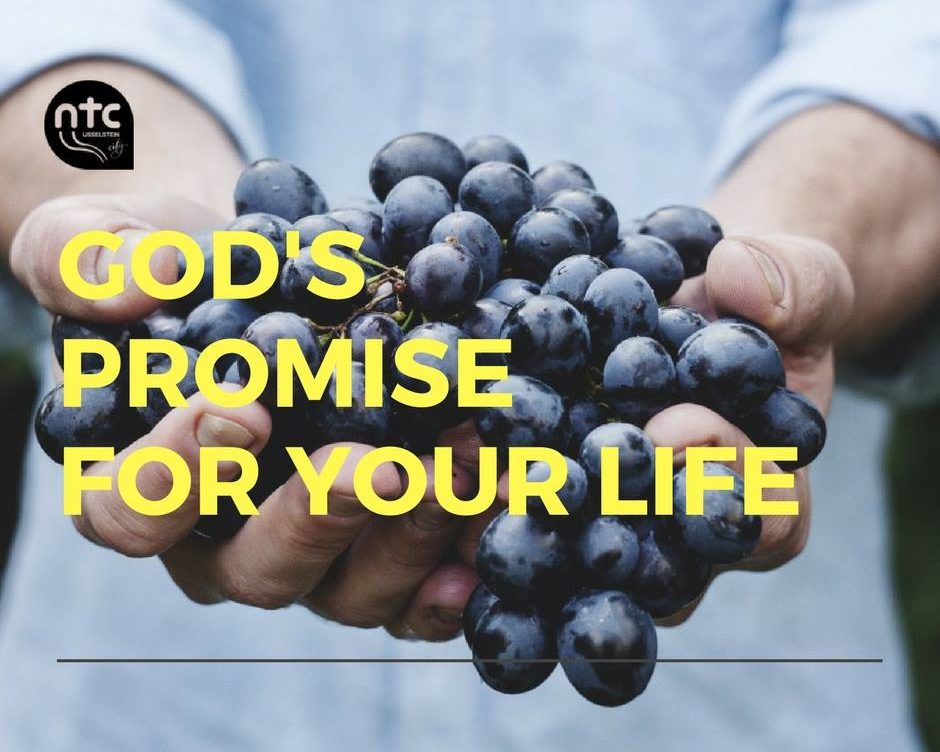 God's promise for your life
